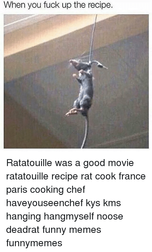 When You Fuck Up The Recipe Ratatouille Was A Good Movie Ratatouille Recipe Rat Cook France Paris Cooking Chef Haveyouseenchef Kys Kms Hanging Hangmyself Noose Deadrat Funny Memes Funnymemes Meme On