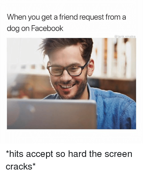 Facebook, Funny, and Dog: When you get a friend request from a  dog on Facebook  @tank.sinatra *hits accept so hard the screen cracks*