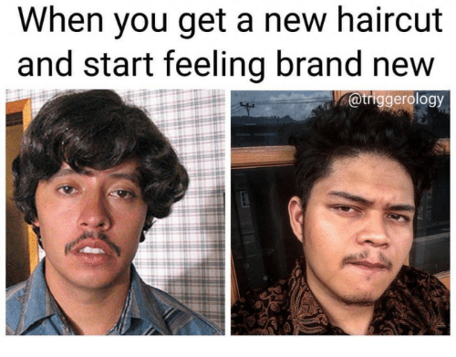 Haircut, Brand New, and Brand: When you get a new haircut and start