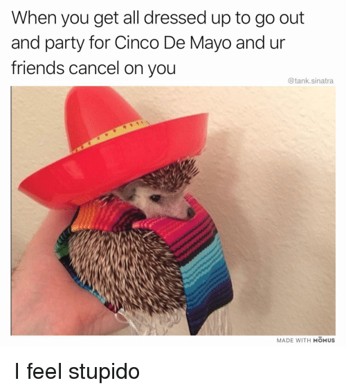 Friends, Funny, and Party: When you get all dressed up to go out  and party for Cinco De Mayo and ur  friends cancel on you  @tank.sinatra  MADE WITH MOMUS I feel stupido