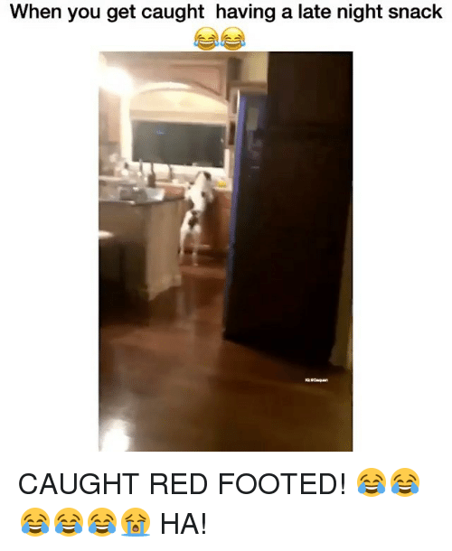 Memes, 🤖, and Red: When you get caught having a late night snack CAUGHT RED FOOTED! 😂😂😂😂😂😭 HA!