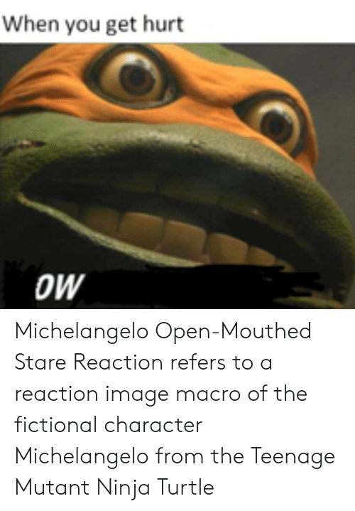 Michelangelo, Image, and Ninja: When you get hurt  OW Michelangelo Open-Mouthed Stare Reaction refers to a reaction image macro of the fictional character Michelangelo from the Teenage Mutant Ninja Turtle