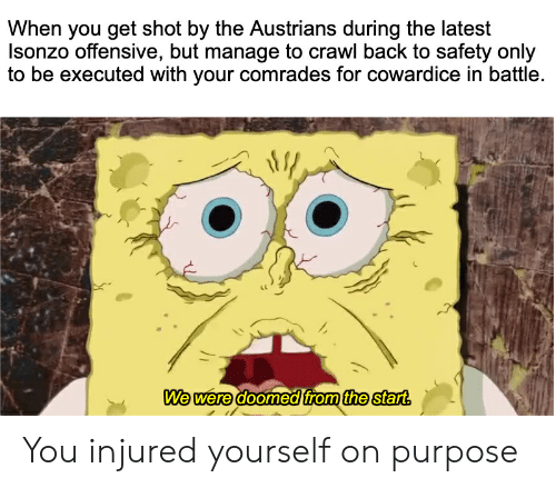 History, Back, and Crawl: When you get shot by the Austrians during the latest  nzo offensive, but manage to crawl back to safety only  to be executed with your comrades for cowardice in battle.  We were doomed from the start. You injured yourself on purpose