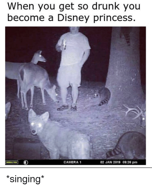 Disney, Drunk, and Reddit: When you get so drunk you  become a Disney princess  CAMERA 1  02 JAN 2019 09:26 pm