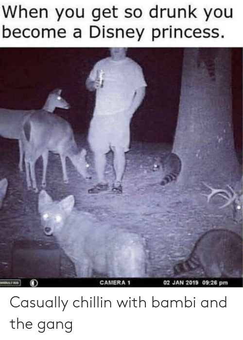 Bambi, Disney, and Drunk: When you get so drunk you  become a Disney princess.  02 JAN 2019 09:26 pm  MOULTRE  CAMERA 1 Casually chillin with bambi and the gang