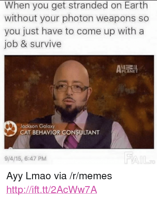 """Ayy LMAO, Jackson Galaxy, and Lmao: When you get stranded on Earth  without your photon weapons so  you just have to come up with a  job & survive  ZAL  PLANET  Jackson Galaxy  CAT BEHAVIOR CONSULTANT  9/4/15, 6:47 PM  FA <p>Ayy Lmao via /r/memes <a href=""""http://ift.tt/2AcWw7A"""">http://ift.tt/2AcWw7A</a></p>"""