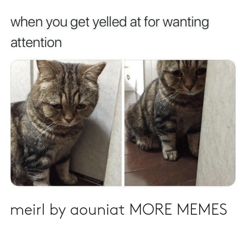 Dank, Memes, and Target: when you get yelled at for wanting  attention meirl by aouniat MORE MEMES
