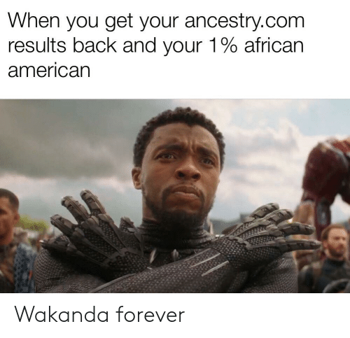 American, Ancestry, and Forever: When you get your ancestry.com  results back and your 1% african  american Wakanda forever