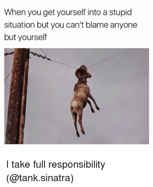 Memes, Responsibility, and 🤖: When you get yourself into a stupid  situation but you can't blame anyone  but yourself I take full responsibility (@tank.sinatra)