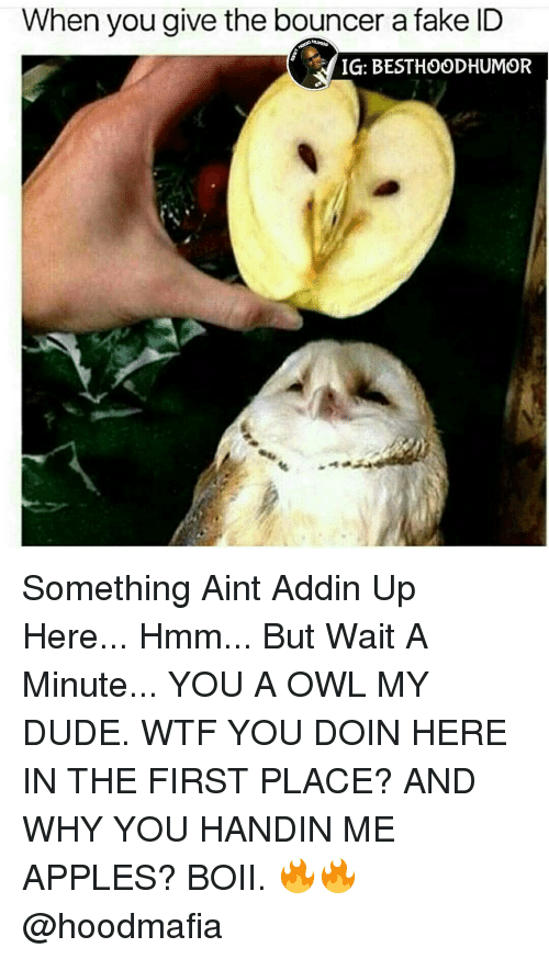 Bouncer The But And Apples Something A Handin Why Me Here My Aint Besthoodhumor Give Minute You Fake When Addin Dude Id Hmm Up Ig Wait First Doin Owl In Boii Wtf Place