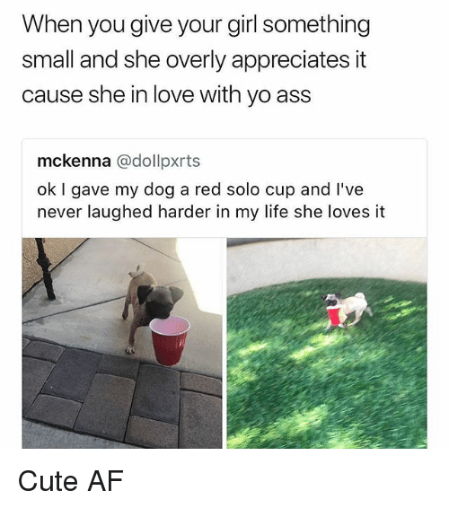 Af, Ass, and Cute: When you give your girl something  small and she overly appreciates it  cause she in love with yo ass  mckenna @dollpxrts  ok I gave my dog a red solo cup and l've  never laughed harder in my life she loves it Cute AF