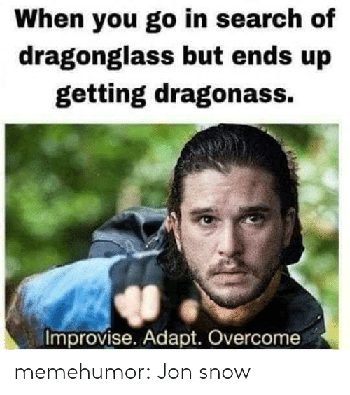 Tumblr, Jon Snow, and Blog: When you go in search of  dragonglass but ends up  getting dragonass.  Improvise. Adapt. Overcome memehumor:  Jon snow