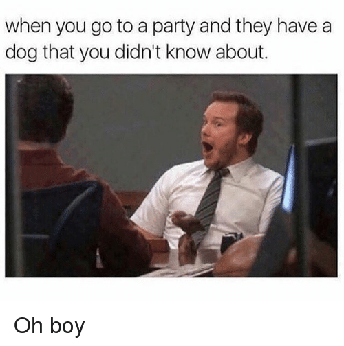 Memes, Party, and Boy: when you go to a party and they have a  dog that you didn't know about. Oh boy