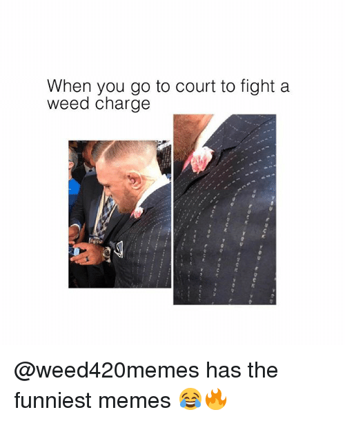Memes, Weed, and Fight: When you go to court to fight a  weed charge @weed420memes has the funniest memes 😂🔥