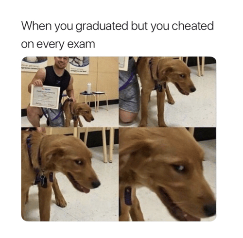 You, When You, and Exam: When you graduated but you cheated  on every exam
