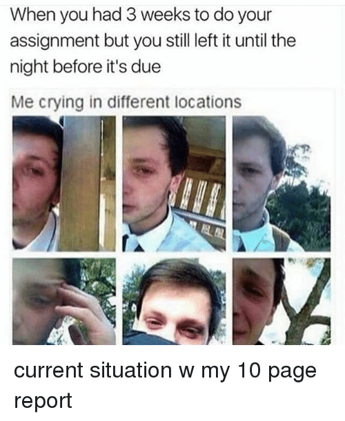Crying, Memes, and 🤖: When you had 3 weeks to do your  assignment but you still left it until the  night before it's due  Me crying in different locations current situation w my 10 page report