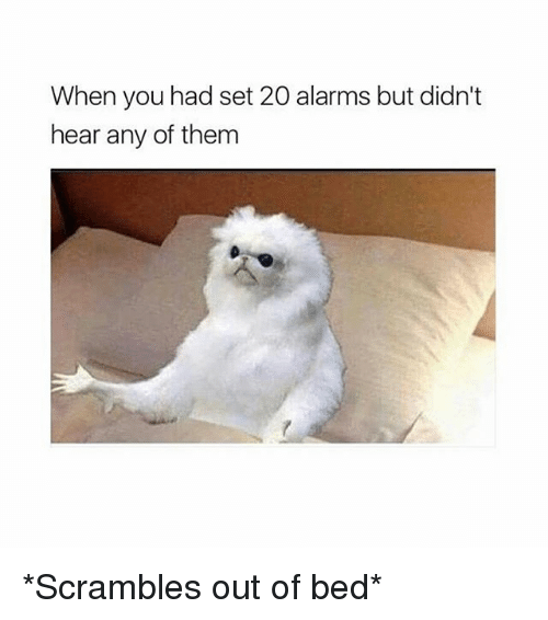 Memes, 🤖, and Set: When you had set 20 alarms but didn't  hear any of them *Scrambles out of bed*