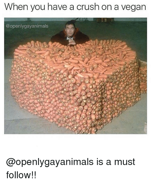 Crush, Memes, and Vegan: When you have a crush on a vegan  @openlygayanimals @openlygayanimals is a must follow!!