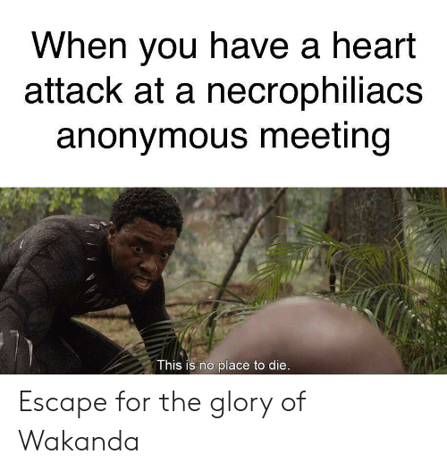 Reddit, Anonymous, and Heart: When you have a heart  attack at a necrophiliacs  anonymous meeting  This is no place to die. Escape for the glory of Wakanda