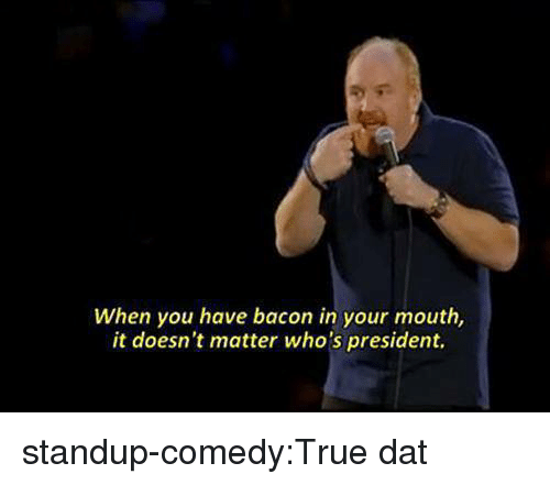 True, Tumblr, and Blog: When you have bacon in your mouth,  it doesn't matter who's president. standup-comedy:True dat