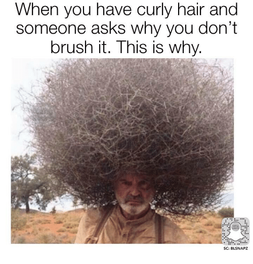 when you have curly hair and someone asks why you 27190512 ✅ 25 best memes about curly hair curly hair memes