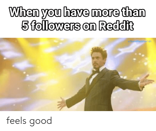 When You Have More Than 5 Followers on Reddit 0 redReddi 101