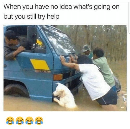 Funny, Help, and Idea: When you have no idea what's going on  but you still try help 😂😂😂😂