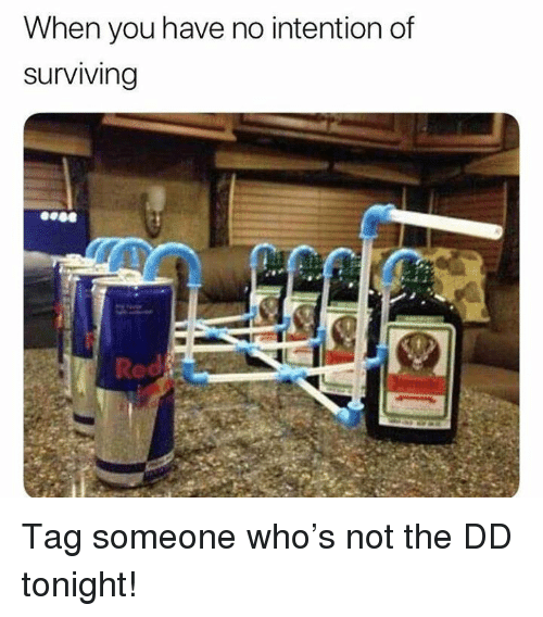 Memes, Tag Someone, and 🤖: When you have no intention df  surviving  Red Tag someone who's not the DD tonight!