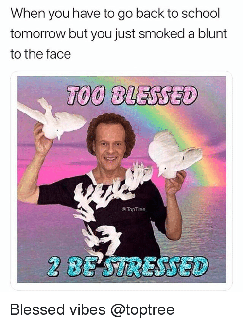 Blessed, School, and Weed: When you have to go back to school  tomorrow but you just smoked a blunt  to the face  @Top Tree  BE TRESSED Blessed vibes @toptree
