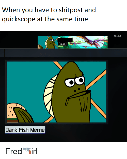 Dank, Meme, and Memes: When you have to shitpost and  quick scope at the same time  DANK  Dank Fish Meme  43.131.5 Fred🔫irl