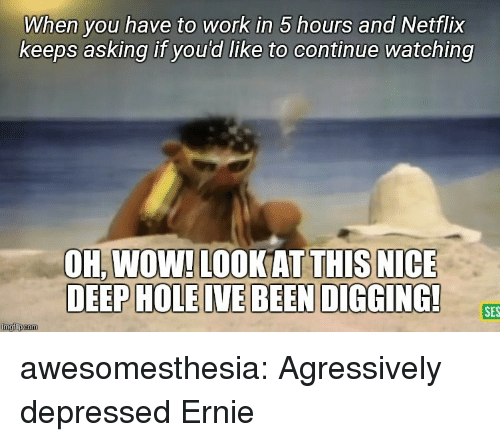 Netflix, Tumblr, and Wow: When you have to work in 5 hours and Netflix  keeps asking if you'd like to continue watching  OH,WOW! LOOKATTHIS NICE  SES  imgfip.com awesomesthesia:  Agressively depressed Ernie