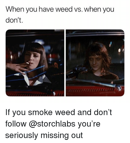 Weed, Trendy, and Don: When you have weed vs. when you  don't. If you smoke weed and don't follow @storchlabs you're seriously missing out