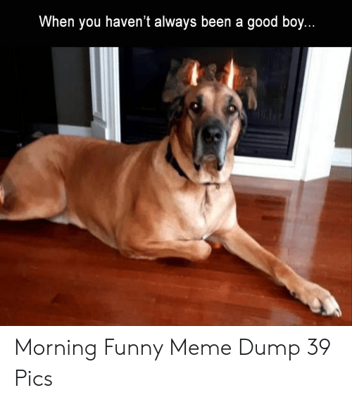 Funny, Meme, and Good: When you haven't always been a good boy. Morning Funny Meme Dump 39 Pics