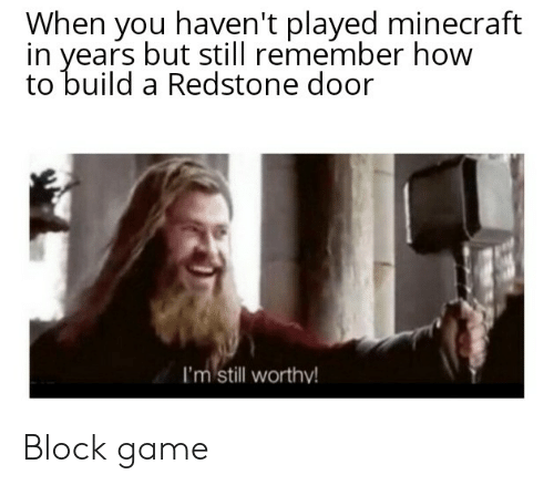 Minecraft, Game, and How To: When you haven't played minecraft  in years but still remember how  to build a Redstone door  I'm still  I'm still worthy! Block game