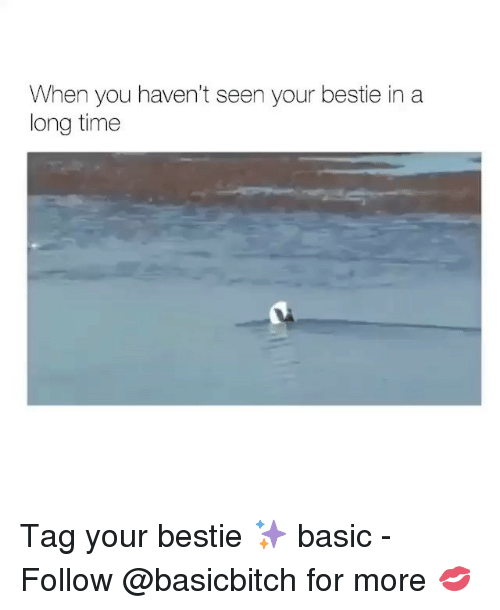 Time, Girl Memes, and Basic: When you haven't seen your bestie in a  long time Tag your bestie ✨ basic - Follow @basicbitch for more 💋