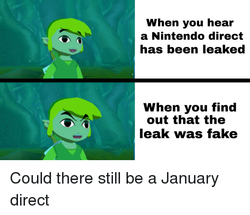 When You Hear a Nintendo Direct Has Been Leaked When You Find Out