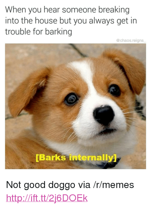 "Memes, Good, and House: When you hear someone breaking  into the house but you always get in  trouble for barking  @chaos.reigns  [Barks internally <p>Not good doggo via /r/memes <a href=""http://ift.tt/2j6DOEk"">http://ift.tt/2j6DOEk</a></p>"