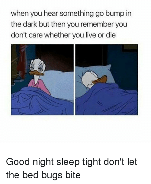 sleep tight dont let the bed bugs bite