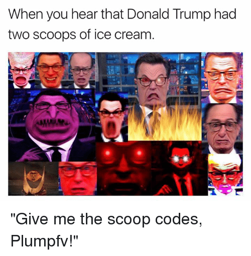 """Donald Trump, Memes, and Ice Cream: When you hear that Donald Trump had  two scoops of ice cream """"Give me the scoop codes, Plumpfv!"""""""