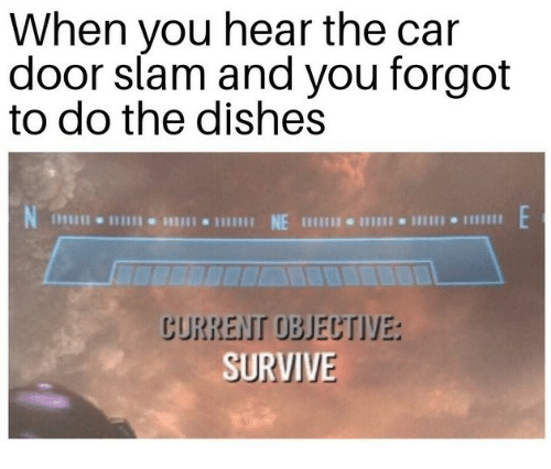 Car, Slam, and You: When you hear the car  door slam and you forgot  to do the dishes  SURVIVE