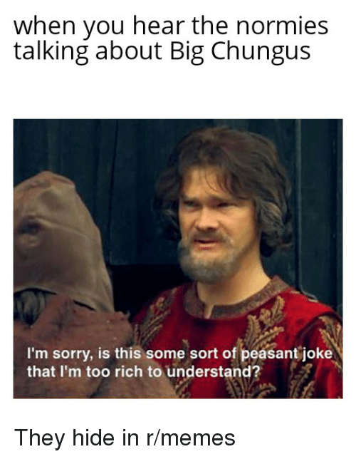 When You Hear The Normies Talking About Big Chungus I M Sorry Is