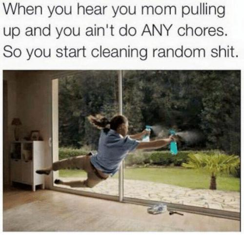 Shit, Mom, and Random: When you hear you mom pulling  up and you ain't do ANY chores.  So you start cleaning random shit.