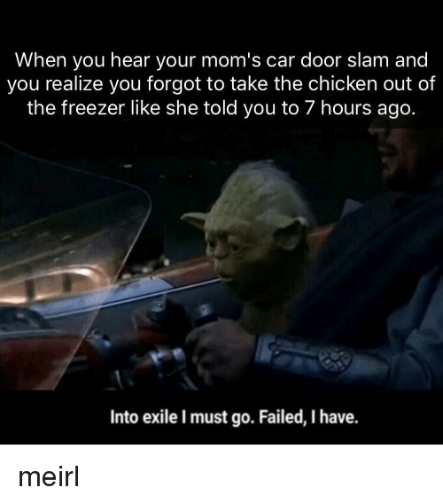Moms, Chicken, and MeIRL: When you hear your mom's car door slam and  you realize you forgot to take the chicken out of  the freezer like she told you to 7 hours ago.  Into exile I must go. Failed, I have. meirl