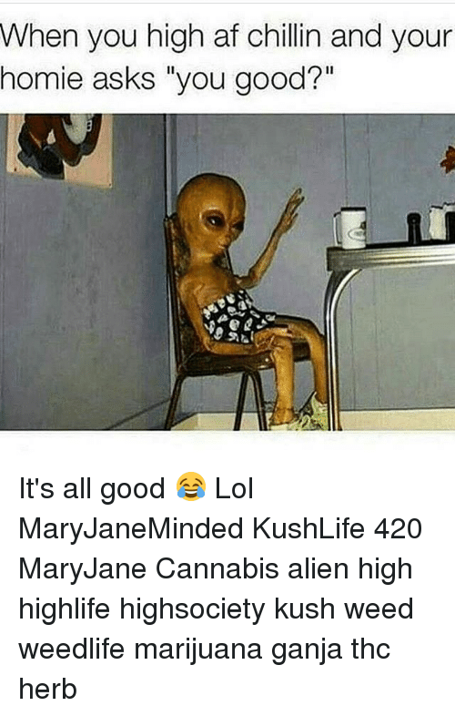 when you high af chillin and your homie asks you 2912118 ✅ 25 best memes about when you high when you high memes