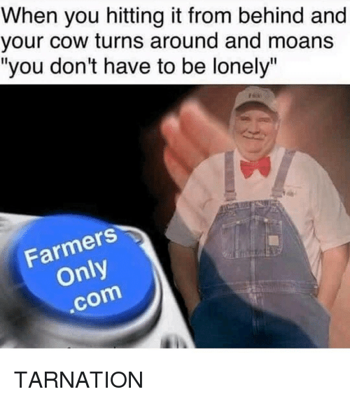 when you hitting it from behind and your cow turns 13390023 25 best hitting it from behind memes from memes, when you hitting