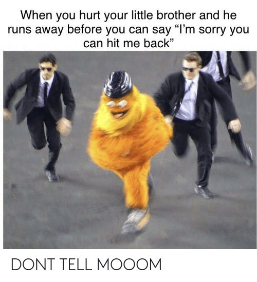 """Reddit, Sorry, and Little Brother: When you hurt your little brother and he  runs away before you can say """"l'm sorry you  can hit me back"""" DONT TELL MOOOM"""