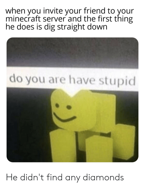 Minecraft, Dank Memes, and Dig: when you invite your friend to your  minecraft server and the first thing  he does is dig straight down  do you are have stupid He didn't find any diamonds