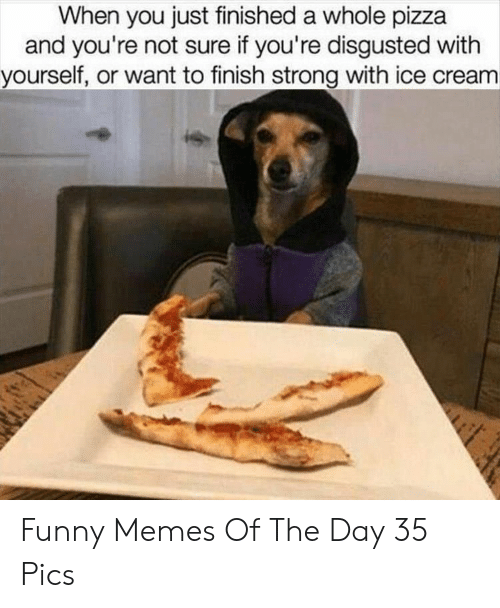 Funny, Memes, and Pizza: When you just finished a whole pizza  and you're not sure if you're disgusted with  yourself, or want to finish strong with ice cream Funny Memes Of The Day 35 Pics