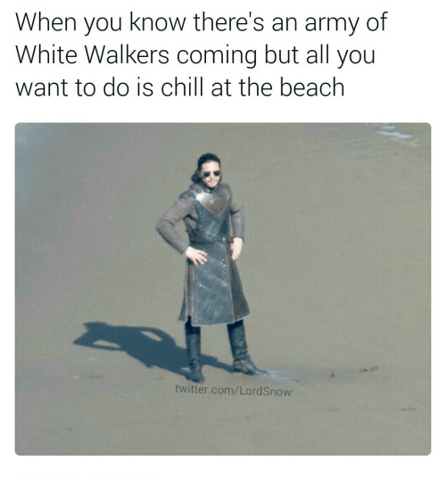 Chill, Twitter, and Army: When you know there's  White Walkers coming but all you  of  an army  want to do is chill at the beach  twitter.com/LordSnow
