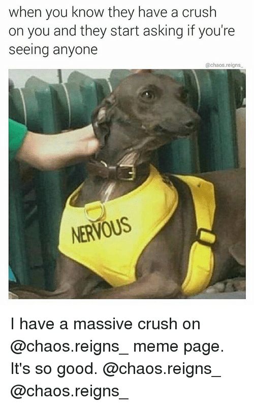 Crush, Memes, and Good: when you know they have a crush  on you and they start asking if you're  seeing anyone  @chaos reigns  NERVOUS I have a massive crush on @chaos.reigns_ meme page. It's so good. @chaos.reigns_ @chaos.reigns_